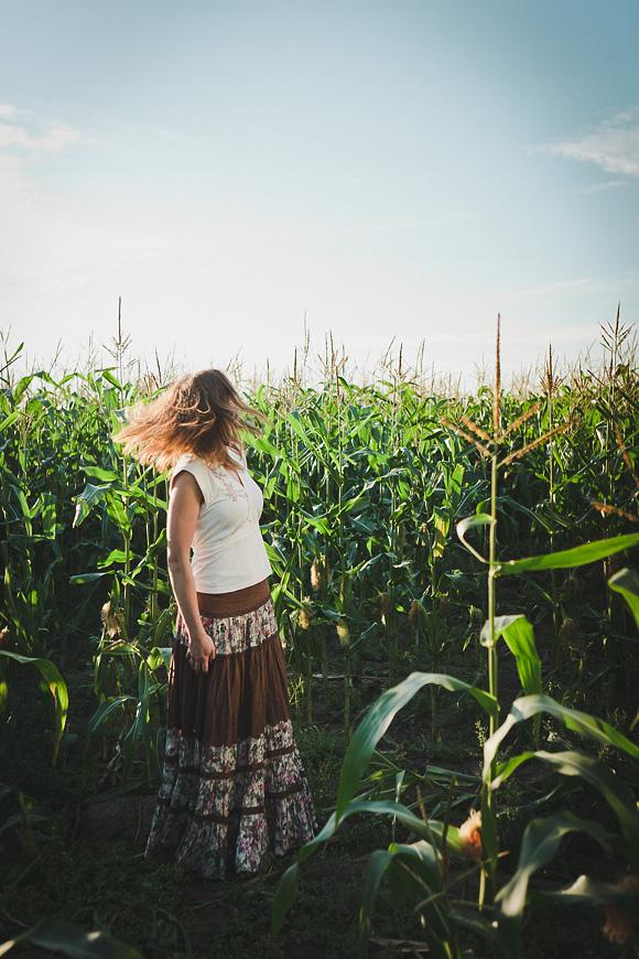 Family in a cornfield - Jaan Sokk Photography