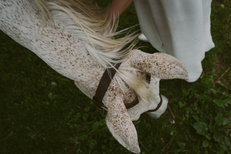 horseback_photo_session_0015.jpg